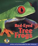 John Netherton: Red-Eyed Tree Frogs (Early Bird Nature)