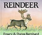 Reindeer by Emery Bernhard