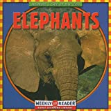 JoAnn Early Macken: Elephants (Animals I See at the Zoo)