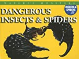McNab, Chris: Dangerous Insects & Spiders: Dangerous Insects And Spiders