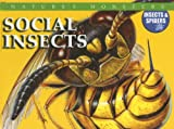 McNab, Chris: Social Insects
