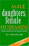 Amadiume, Ifi: Male Daughters, Female Husbands