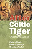 Convery, Frank J.: After the Celtic Tiger: Challenges Ahead