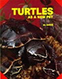 David, A.: Turtles As a New Pet