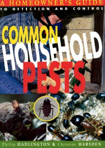 common-household-pests-homeowners-guide-to-detection-and-control