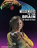 Paul D. Martin: Messengers to the Brain Our Fantastic Five Senses