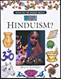 Ganeri, Anita: What Do We Know About Hinduism?