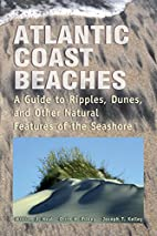 Atlantic Coast Beaches: A Guide to Ripples,…
