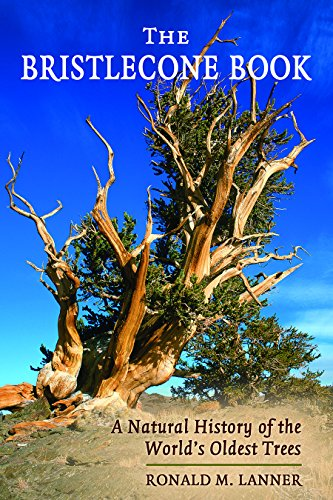 bristlecone-book-a-natural-history-of-the-worlds-oldest-trees