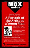 Mitchell, Matthew: Portrait of the Artist as a Young Man, A (MAXNotes Literature Guides)