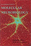Hall, Zach W.: An Introduction to Molecular Neurobiology