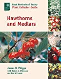 Phipps, J. B.: Hawthorns and Medlars