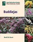 Buddlejas (Royal Horticultural Society Plant…
