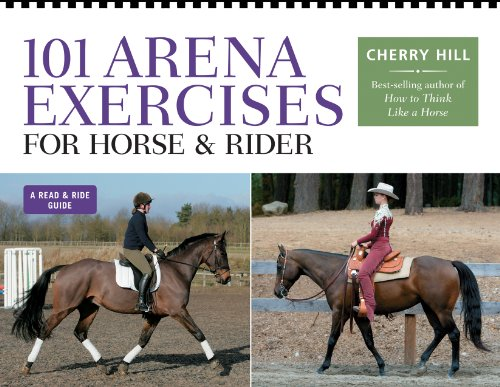 101-arena-exercises-for-horse-rider-read-ride