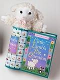 Hall, Susan T.: Little Lamb's Big Question: Little Hugs Books