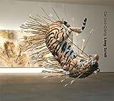 Pierre Théberge: Cai Guo-Qiang: Long Scroll