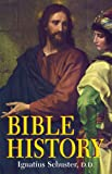Ignatius Schuster: Illustrated Bible History of the Old and New Testaments for the Use of Catholic Schools