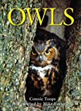 Toops, Connie: Owls