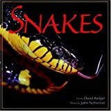 David Badger: Snakes (Wildlife)
