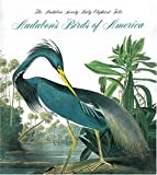 Peterson, Roger T.: Audubon's Birds of America: The Audubon Society Baby Elephant Folio