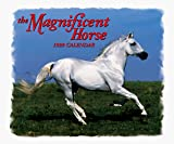 Reiman Publications: Cal 99 Magnificent Horse Calendar