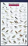 Craig MacGowan: Northwest Park and Backyard Birds (Mac's Guides) (Laminated Card)