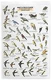 MacGowan, Craig: Mac's Guide-S.W. Park-Backyard Birds