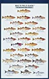 MacGowan, Craig: Mac's Field Guide to Salmon and Trout (Mac's Guides)
