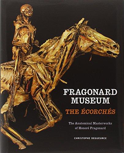 fragonard-museum-the-corchs