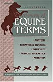 New Horizons Equine Education Center Inc: Dictionary of Equine Terms