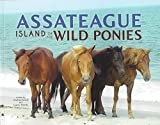 Jauck, Andrea: Assateague: Island of the Wild Ponies