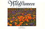 Ulrich, Larry: Wildflowers of California