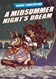 Appignanesi, Richard: A Midsummer Night&#39;s Dream