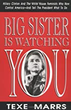 Big Sister Is Watching You: Hillary Clinton…