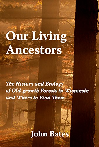 our-living-ancestors-the-history-and-ecology-of-old-growth-forests-in-wisconsin-and-where-to-find-them