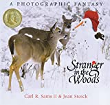 Stoick, Jean: Stranger in the Woods