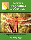 Kathy Biggs: Common Dragonflies of California: A Beginner's Pocket Guide