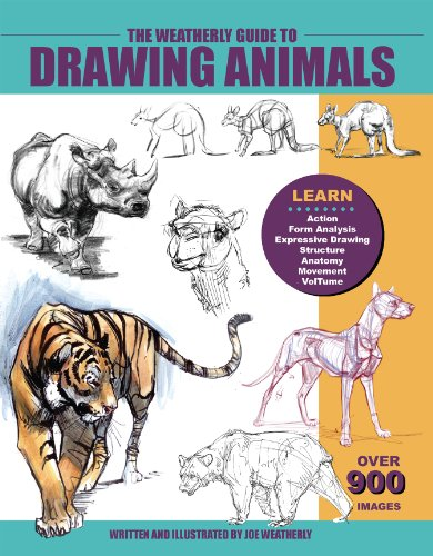 the-weatherly-guide-to-drawing-animals