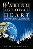 Judith, Anodea: Waking the Global Heart: Humanity&#39;s Rite of Passage from the Love of Power to the Power of Love