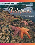 Leon, Vicki: The Secrets of Tidepools: The Bright World of the Rocky Shoreline (Jean-Michel Cousteau Presents)