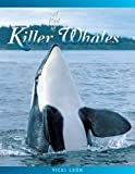 Leon, Vicki: A Pod of Killer Whales: The Mysterious Life of the Intelligent Orca (Jean-Michel Cousteau Presents)