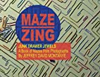 Maze Zing, Junk Drawer Mazes by Jeffrey…