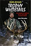 Joe Brooks: Year-Round Trophy Whitetails: The Secrets to Putting All of the Odds in Your Favor