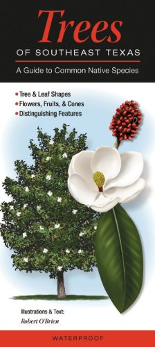 trees-of-southeast-texas-a-guide-to-common-native-species-quick-reference-guides