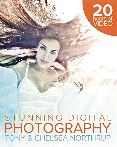 how-to-create-stunning-digital-photography
