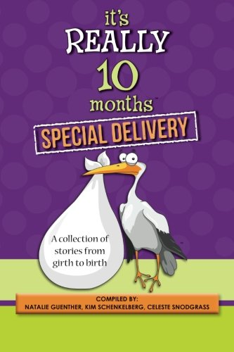its-really-10-months-special-delivery-a-collection-of-stories-from-girth-to-birth