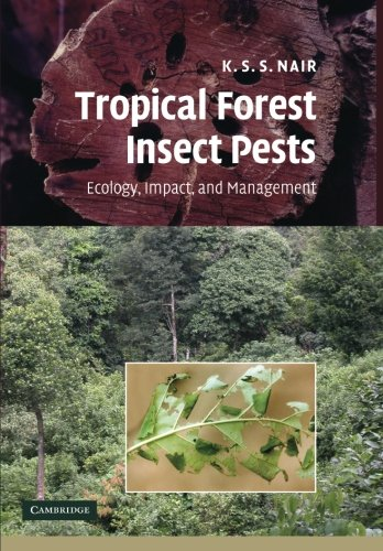 tropical-forest-insect-pests-ecology-impact-and-management