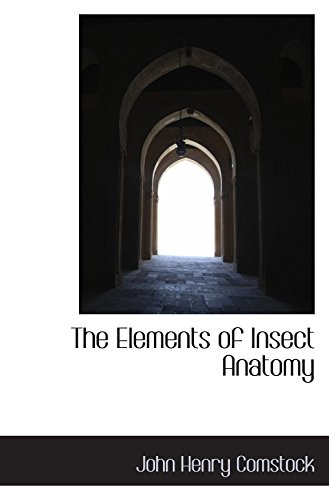 the-elements-of-insect-anatomy