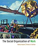 Hodson, Randy: The Social Organization of Work
