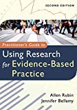 Rubin, Allen: Practitioner's Guide to Using Research for Evidence-Based Practice